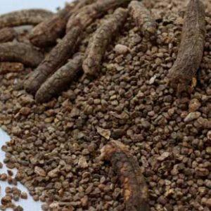 Hạt chuối hột rừng là vị thuốc nam chữa bệnh hiệu quả